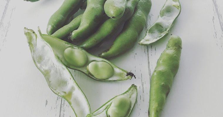 旬のそら豆を使った自家製豆板醤づくり教室開催します